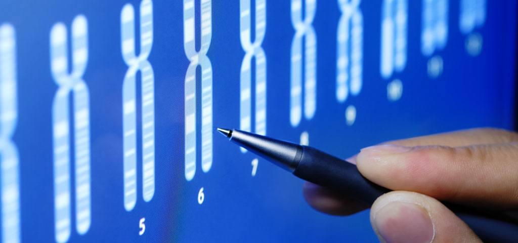Analyse de compatibilité génétique