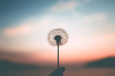 Mon histoire de PMA « Les miracles prennent du temps