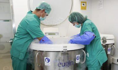 Sécurité maximale en matière de conservation d'ovules, d'embryons et de sperme