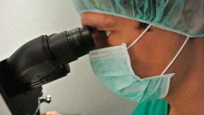 De quoi dépend la qualité des embryons?
